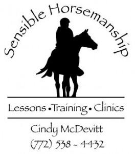 Sensible Horsemanship