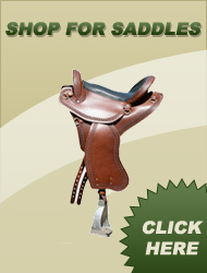 Shop Saddles