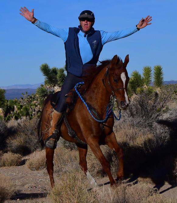 Specialized Saddles